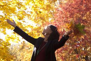 """Bộ ảnh số 11: """"Có một mùa trong ánh sáng diệu kỳ"""" - Tâm Phong"""