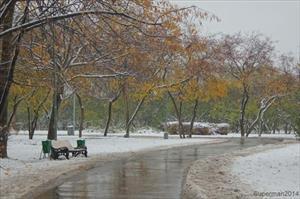Moskva sắp có tuyết đầu mùa?