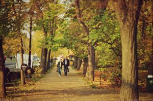 """Bộ ảnh số 10: """"Mùa yêu thương"""" - Đặng Thị Khánh Linh"""