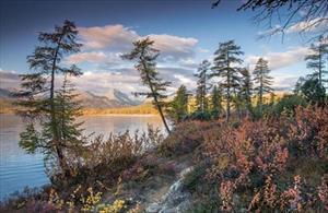 Mùa thu ở Nga đẹp mê hồn thông qua ống kính nhiếp ảnh gia Anisimov