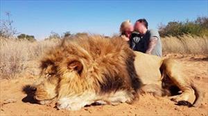 Cặp đôi Anh khoe ảnh xác sư tử, dân mạng ước họ bị ăn thịt