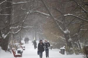 Biến đổi khí hậu: Tuyết rơi bất thường tại châu Âu