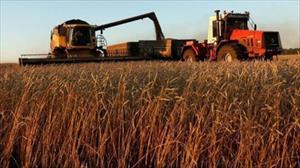 """Nông nghiệp Nga """"miễn nhiễm"""" với trừng phạt kinh tế của Mỹ và phương Tây"""