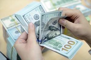 Tỷ giá trung tâm tăng kỷ lục