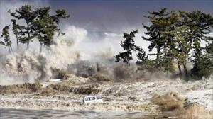 Sóng thần tấn công một số quốc gia sau động đất 7 độ richter ở Thái Bình Dương