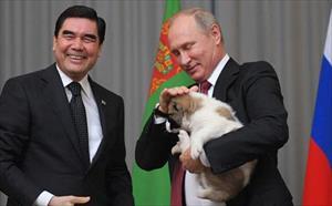 """Những khoảnh khắc """"yêu động vật"""" ấn tượng của Tổng thống Nga Putin"""