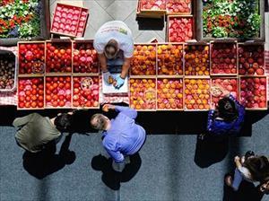 Nga mở rộng lệnh cấm thực phẩm nhập khẩu của EU