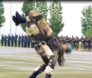 Video: Đặc nhiệm Nga diễn võ, lộ nhiều đòn thế giống Vovinam