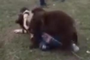 Video: Hãi hùng cảnh bé trai vật nhau với gấu ở Nga