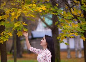 """Bộ ảnh số 32: """"Duyên dáng mùa thu"""" - Đỗ Dung"""