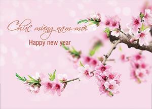 HĐH Quảng Bình: Thư chúc mừng năm mới 2017