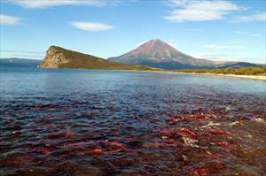Du lịch ở Nga: Tham quan núi lửa và tắm rượu sâm banh