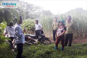 """Chuyện một gia đình sống gần như tuyệt giao với xã hội ở Thanh Hóa: Run rẩy đột nhập """"khu vườn kỳ bí"""""""