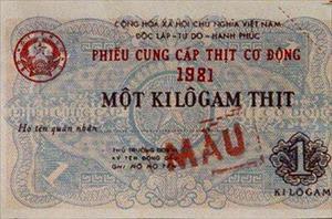 Bùi ngùi nhìn lại cái Tết 30 năm trước của gia đình Việt