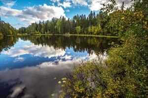 Cảnh sắc mùa thu mê đắm lòng người của nước Nga