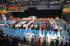 Cup Quốc tế môn võ cổ truyền Việt Nam lần thứ nhất tại Marseille (Pháp)