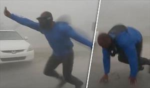 Người đàn ông Mỹ vật lộn giữa bão Irma để đo sức gió