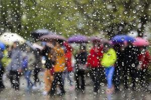 """Cảnh báo cấp độ thời tiết """"màu vàng"""" ở Moskva và các vùng lân cận"""