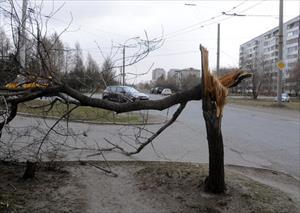 Tiếp tục cảnh báo mưa bão ở Moskva và vùng ngoại  ô