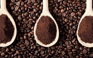 Hàng ngon bán cho Tây, dân Việt uống cà phê
