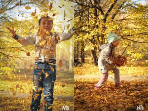 Bộ ảnh số 4: Mùa thu thành phố Irkutsk