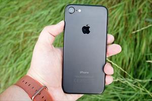 Apple sẽ làm mới 2 dòng iPhone 7 và iPhone 8 tại Đức