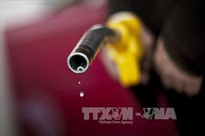 Giá dầu mỏ thế giới bất ngờ tăng mạnh