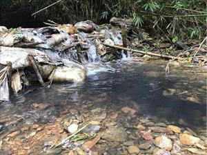 Lộ trình bất thường của xe ôtô chở dầu thải đổ vào nguồn nước sông Đà