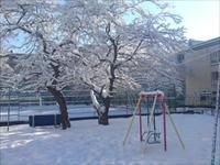 Những hình ảnh mùa đông nước Nga - phần 8