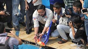 Chuyên gia Nhật Bản thả cá Koi xuống sông Tô Lịch chứng minh nước đã sạch