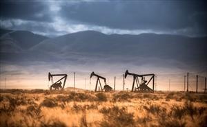Sản lượng dầu của Ả Rập Saudi giảm 50%, giá dầu sẽ tăng vọt?