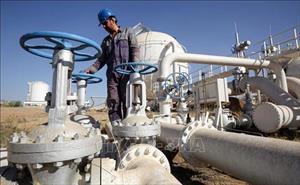 Giá dầu thế giới chạm mức