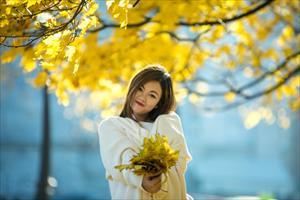 """Bộ ảnh số 37: """"Mùa thu vàng - tình yêu của tôi"""" - Mỹ Linh"""