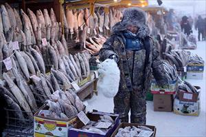 Ngôi làng lạnh nhất nước Nga có thể xuống -71 độ C