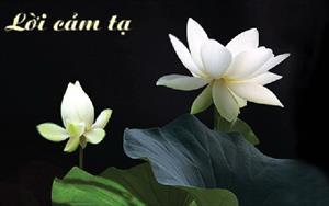 Lời cảm ơn từ BCH HĐH Nghệ An và GĐ anh Nguyễn Hữu Cường