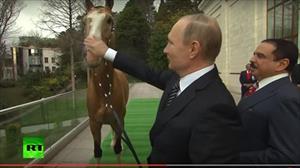 Nguyên thủ Nga - Bahrain trao đổi quà ngựa chiến và kiếm sắc
