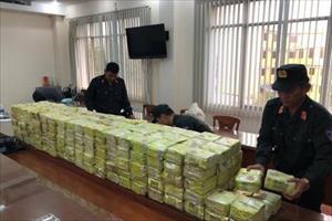 Phá đại án nửa tấn ma túy, bắt 8 người Trung Quốc