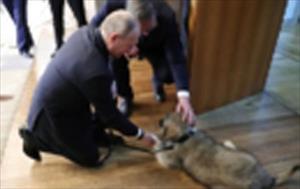 Tổng thống Nga Putin nhận món quà đặc biệt từ Tổng thống Serbia