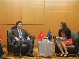 Việt Nam-EU thúc đẩy đàm phán và ký kết FTA song phương