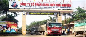 Bắt cựu Chủ tịch HĐQT và Tổng giám đốc Tổng công ty Thép Việt Nam