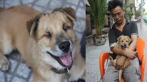 Khoảnh khắc hạnh phúc của anh đánh giày câm và chú chó mù
