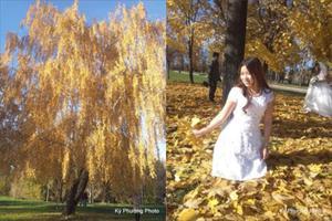 """Bộ ảnh """"Mùa thu vàng nước Nga"""" BONUS 18: Khoảnh khắc mùa thu - Lê Thu Hương"""
