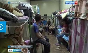 Moskva: Bắt hơn 100 lao động nhập cư ở vườn rau ở vùng ngoại ô