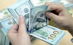 Đổi một USD ở tiệm vàng không còn bị phạt 100 triệu đồng