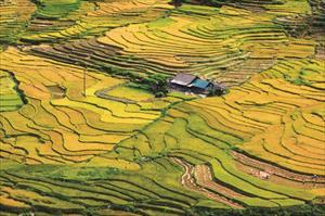 [Photo] Việt Nam vẻ đẹp bất tận